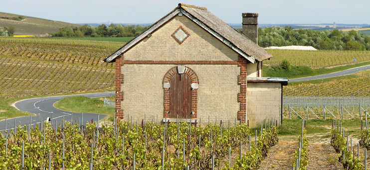 Loge de vigne à Trépail ©PNRMR