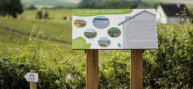 Sentier des loges de vigne ©PNRMR