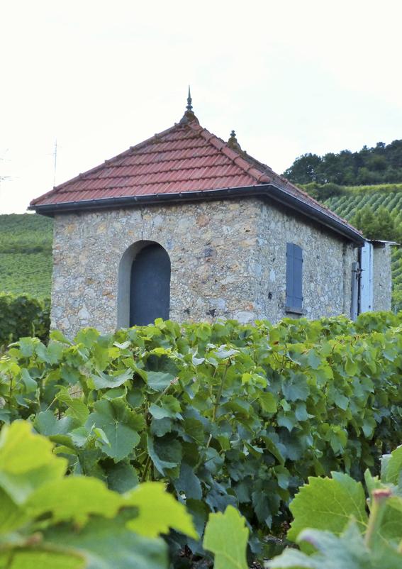 Loge de vigne ©PNRMR