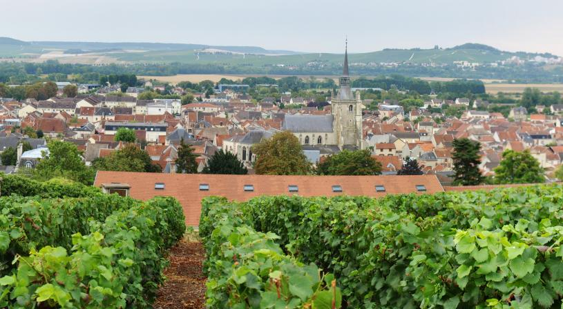 Aÿ-Champagne, panorama. PNRMR