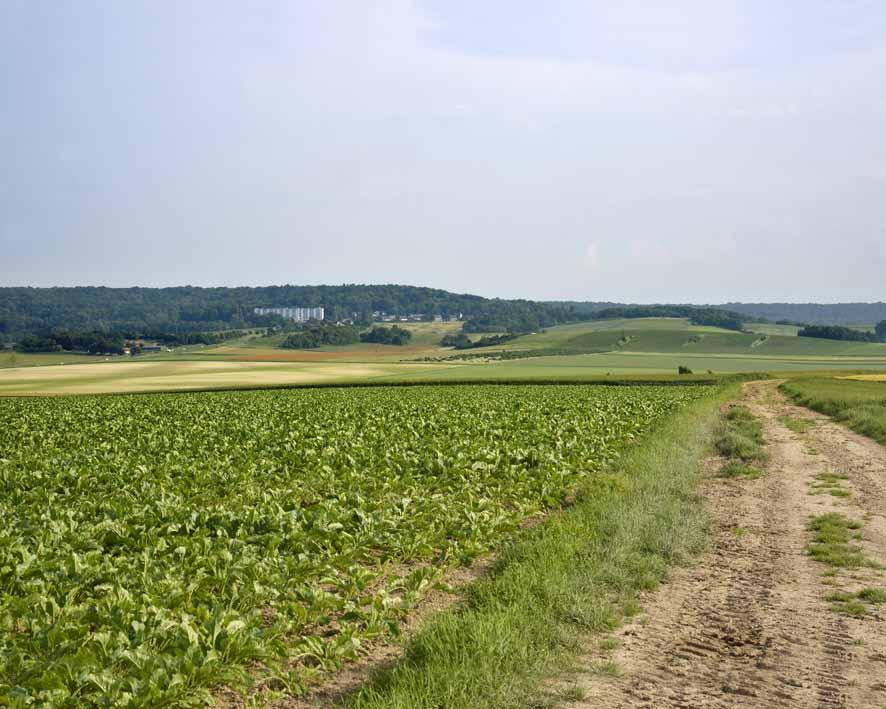 Montchenot