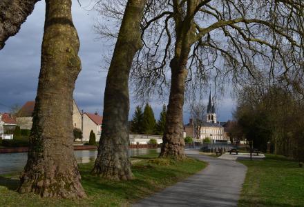 Tours-sur-Marne est longée par le canal latéral à la Marne